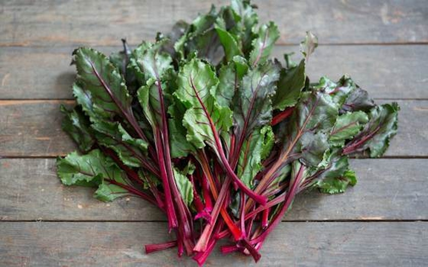 Organic Bull's Blood Beet Greens