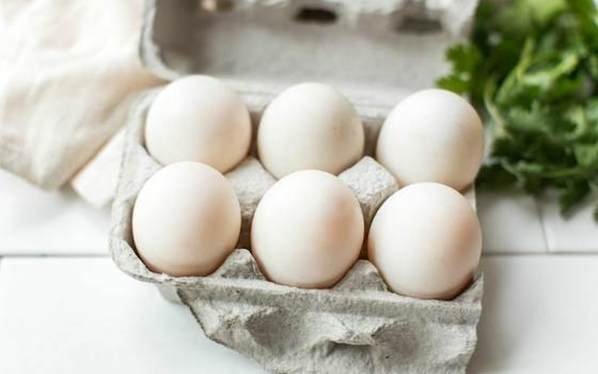 Extra Large Pasture Raised Duck Eggs