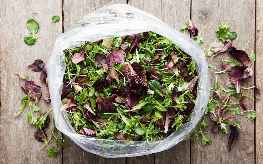 Bulk Pre-Washed Organic Salad Mix