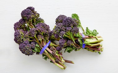 Organic Purple Sprouting Broccoli Duo