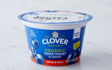 Organic Blueberry Whole Milk Greek Yogurt