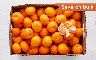 Case of Satsuma Mandarins