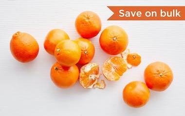 Bulk Organic Daisy Tangerines