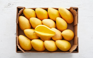 Case of Organic Ataulfo Mangoes (Mexico)