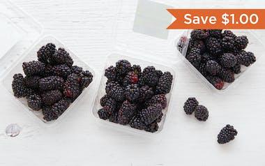Organic Blackberry 3-Pack (Mexico)