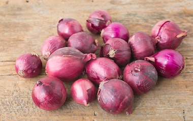 Organic Small Red Onions