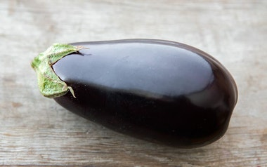 Organic Black Beauty Eggplant