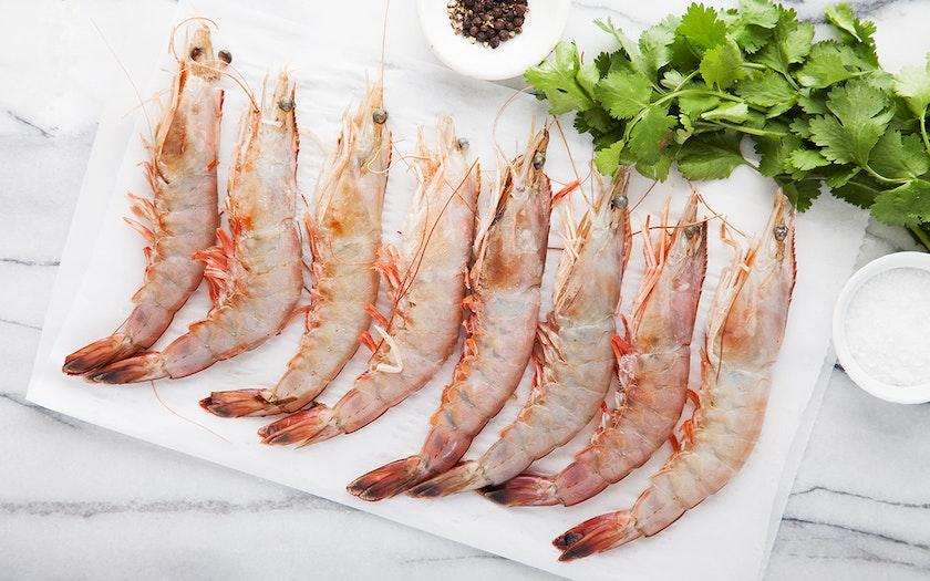 Frozen Wild Giant Gulf Shrimp Head On One Ocean Seafood