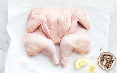 Pasture Raised Spatchcocked Chicken (Frozen)