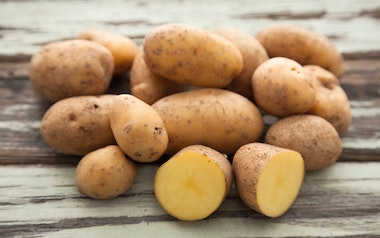 Organic Small German Butterball Potatoes