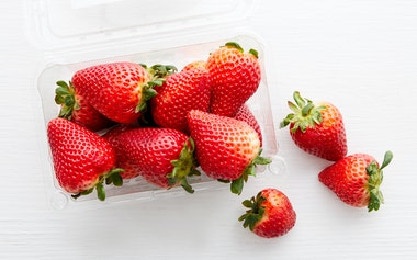Organic & Fair Trade Strawberries (Mexico)