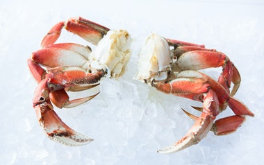 Cracked and Cleaned Dungeness Crab