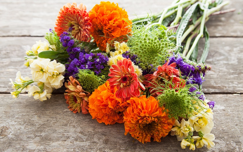 Large Organic Seasonal Bouquet