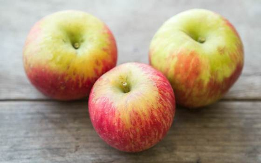 Organic Honey Crisp Apples