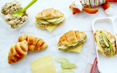 Tuna Sandwiches with Green Apples & Cheddar