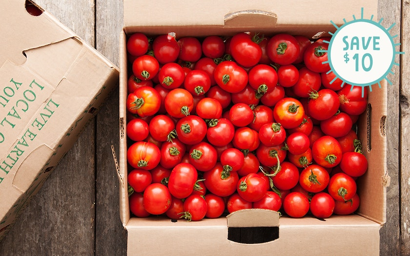 Case of Organic Dry-Farmed Early Girl Tomatoes