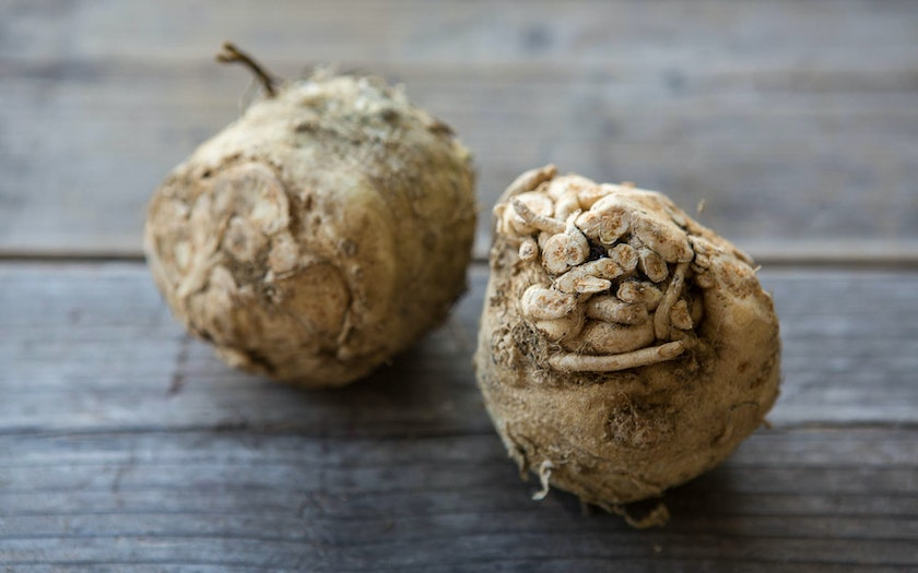 Organic Small Celery Root