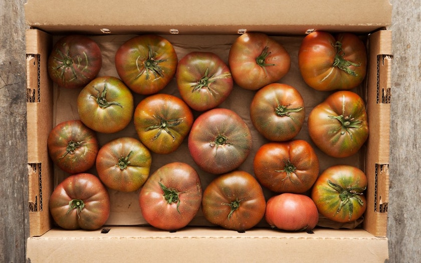 Organic Purple Cherokee Heirloom Tomatoes
