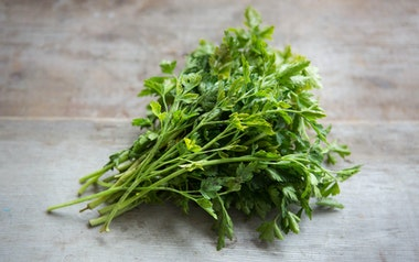 Organic Flat Leaf Italian Parsley