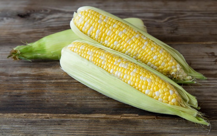 Organic Bi Color Sweet Corn Duo Happy Boy Farms Sf Bay