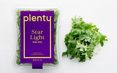 Star Light Baby Kale