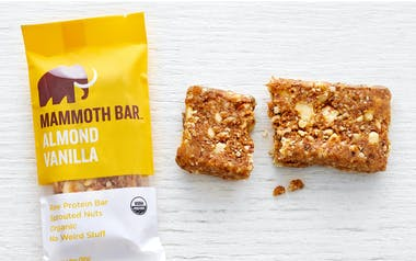 Organic Raw Almond Vanilla Protein Bar