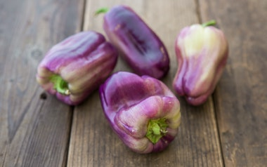 Organic Purple Bell Peppers