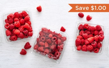 Organic & Fair Trade Raspberry 3-Pack (Mexico)